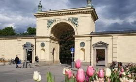 Мюнхен 3-4 часа пешком